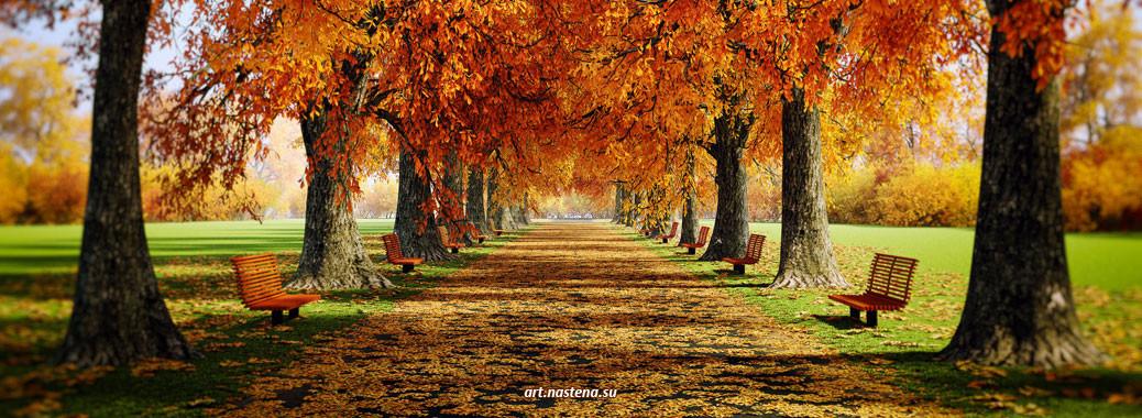Шапка - Осенняя аллея